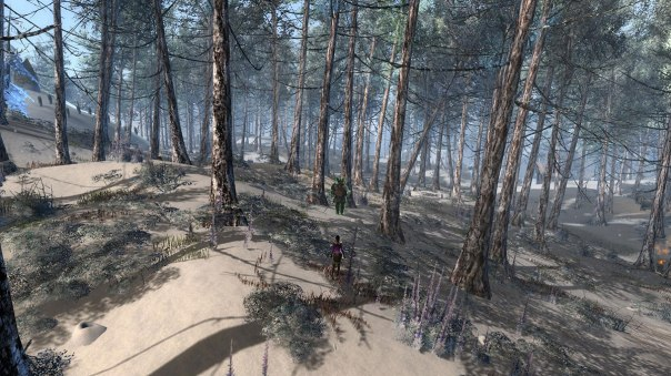 GW2_Trees
