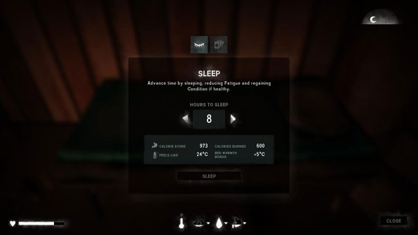 LongDark_Sleep